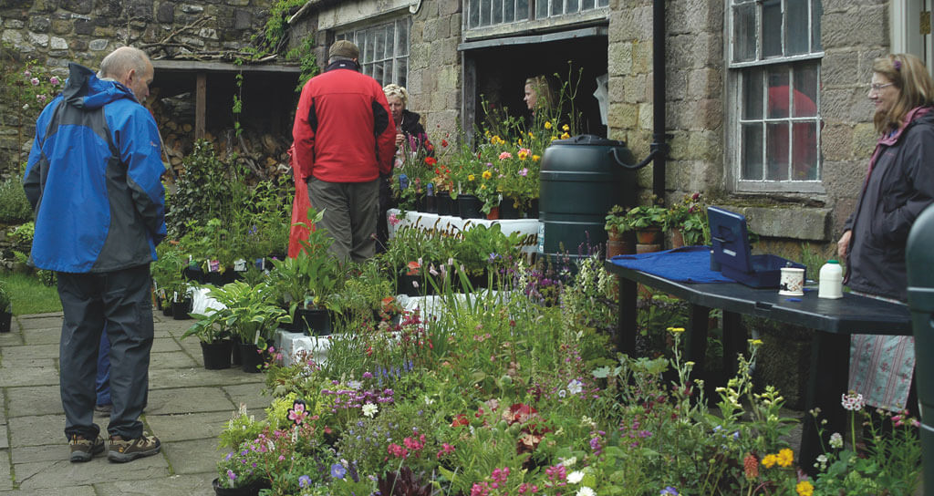 Wirksworth Open Gardens
