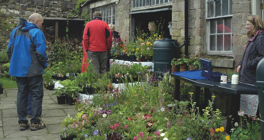 Wirksworth Open Gardens