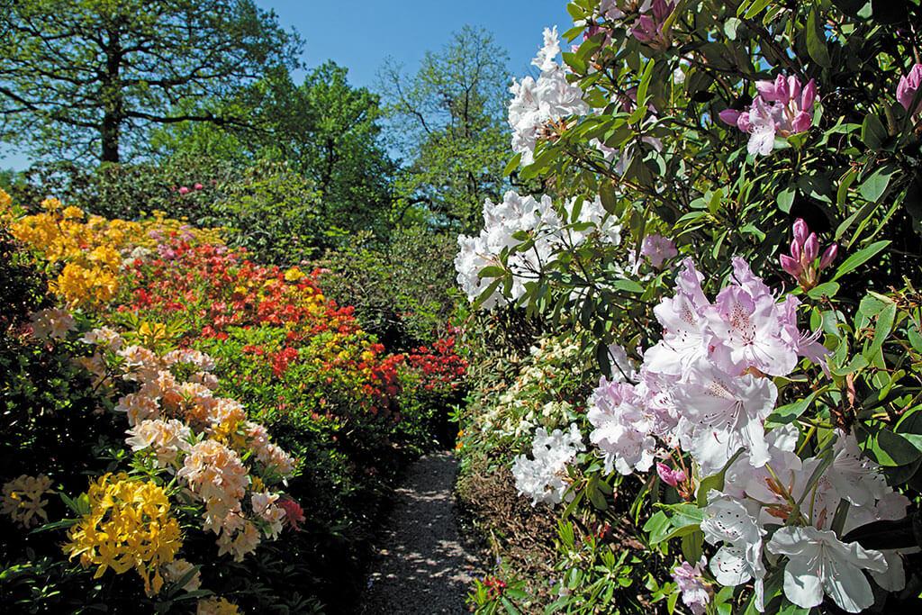 Lea-Gardens