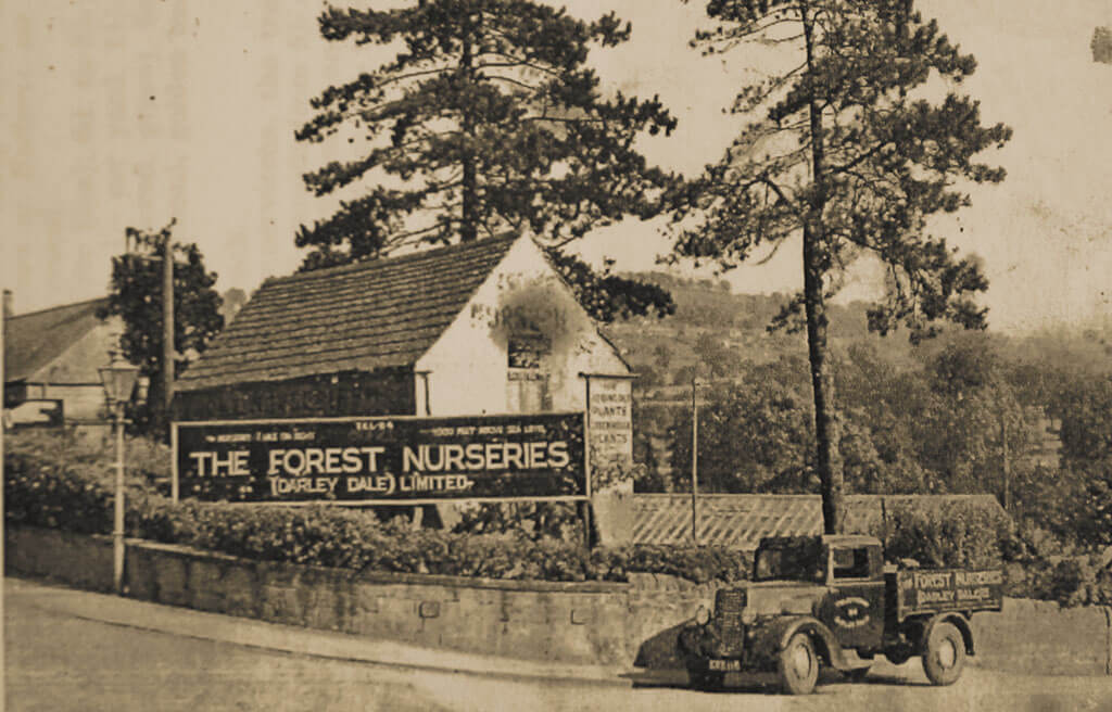 forest-nurseries, Derbyshire