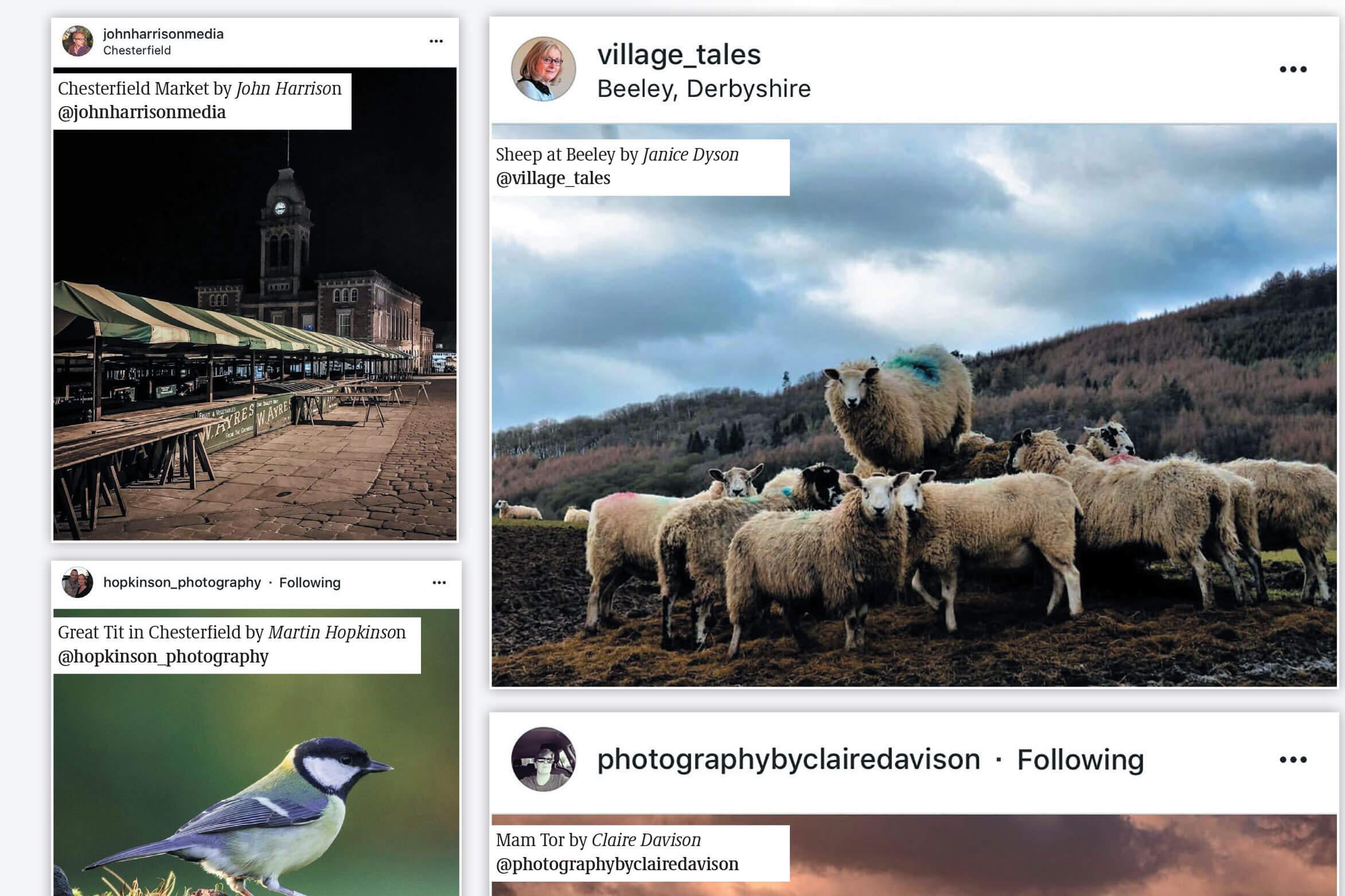 Instagram-Derbyshire